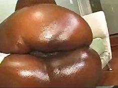Kelly Star Big Round Ass